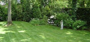 Verzorging van Groen - Brasschaat - Referenties (Gazon)